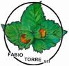 FABIO TORRE SRL