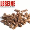 LESEINE CONSTRUCT BELGIUM