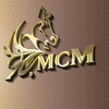 MCM CONCEPT