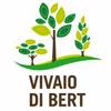 VIVAIO DI BERT