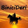 BINICIDERI SHOES