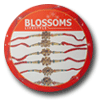 BLOSSOMS LIFESTYLE