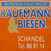 KAUFMANN & BIESEN