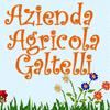 GALTELLI AGRICOLA DEL 2000