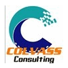 COLVASS CONSULTING LIMITED