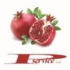 P.SERVICE SRL