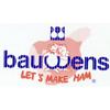 BAUWENS THEO