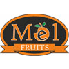 MEL FRUITS