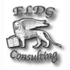 ELDG - CONSULTING