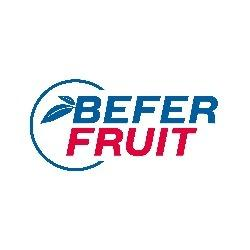 BEFER FRUIT SRL