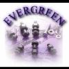 EVERGREEN METALS ENTERPRISE LTD