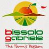 BISSOLO GABRIELE ITALY