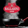 BALLARINI-PANNEN.NL