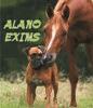 ALANO EXIMS