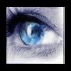 SARL NIGHT VISION EVENEMENTS