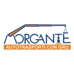 MORGANTE MARCELLO STEFANO - NOLEGGIO GRU E PIATTAFORME AEREE