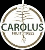 CAROLUS TREES
