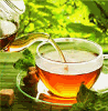 TEA IMPORT VAN AELST
