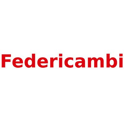 FEDERICAMBI S.R.L.