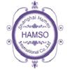 SHANGHAI HAMSO INTERNATIONAL