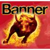 BANNER FRANCE SAS