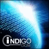 INDIGO DQM DATA MANAGEMENT SYSTEMS