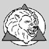 LION LTD