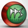 SARL P.P.S ALGERIE