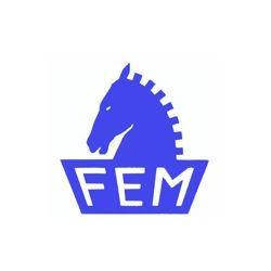 FEM S.R.L.