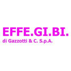 EFFE.GI.BI. DI GAZZOTTI & C. SPA