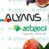 ALYANS GROUP OF COMPANY ZEBZECI
