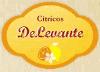 CÍTRICOS DELEVANTE (EXPLOTACIONES AGRÍCOLAS CIPERCAN S.L.)