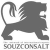 THE NETWORK OF INTERNATIONAL EXPERTS SOUZCONSALT
