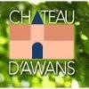 CHATEAU D'AWANS