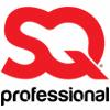 SQ PROFESSIONAL LTD