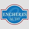 TOULOUSE ENCHERES AUTOMOBILES