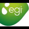 EGI - ENERGIE GENERATION INDUSTRIE