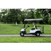 DONGNGUAN EXCELLENCE GOLF AND SIGHTSEEING CAR CO., LTD.