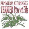 TERRIER PÉPINIÈRES