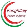 FUNGHITALY DI DAVIDE POGGIO & C. SNC