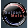GOLDEN MOTOR TECHNOLOGY CO LTD