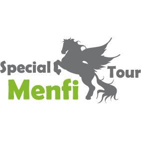 AUTONOLEGGIO SPECIAL TOUR
