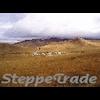 STEPPETRADE