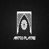 ARTCO PLATRE