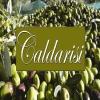 CALDARISI OLIO