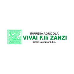 VIVAI FRATELLI ZANZI DI CARLO ZANZI & C. SS SOC. AGR.