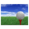 CREST GOLF CO,.LTD