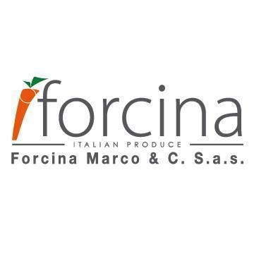 FORCINA MARCO & C. SAS