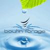 BOUTIN FORAGE
