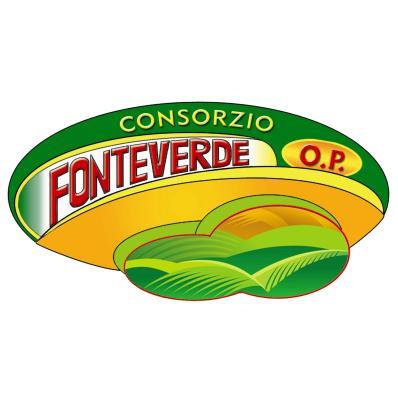 CONSORZIO FONTEVERDE